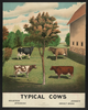 Typical Cows Image