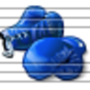 Boxing Gloves Blue 5 Image