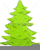 Clipart Sapin Image