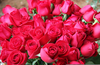 Bouquet Of Roses Image