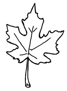 Autumn Leaves Coloring Pages Free Images At Clkercom Vector - Fall-leaves-clip-art-coloring-pages