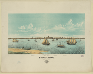 Provincetown.,from Long Point Image