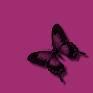 Pink Butterfly Black Glitter Image