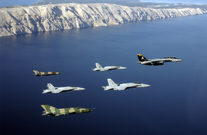 Navy Aircraft Participate In Joint Wings 2002 Image