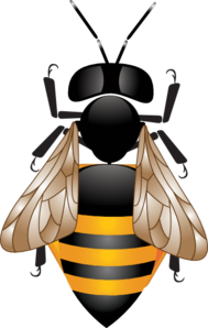 Bee Hd  Clip Art