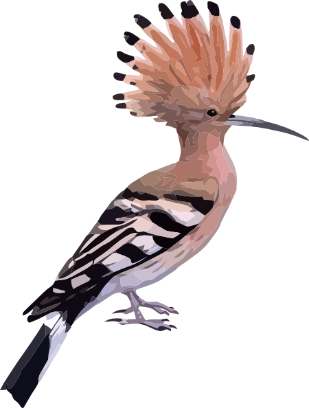 Bird With Long Feathers Clip Art at Clker.com - vector ...