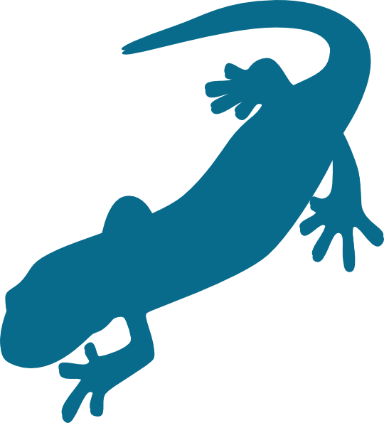 blue salamander clip art at clker com vector clip art online rh clker com salamander clipart black and white