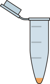 Eppendorf Tube With Pellet Clip Art