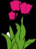 Tulipsi Image