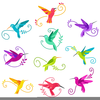 Free Clipart Images Hummingbirds Image
