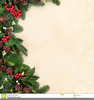 Free Christmas Greens Clipart Image