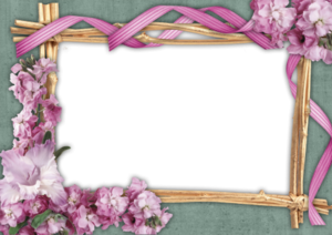Frame Flowers Green Pink Image