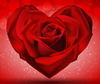 Red Rose In The Shape Of Heart Red Background By Vectorbackgrounds D U Hzp Image