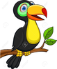 Clipart Free Toucan Image
