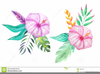 Clipart Flower Free Tropical Image