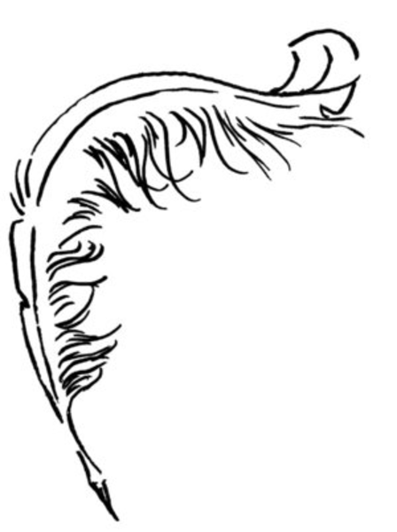 Line Drawing Of Quill : Quill free images at clker vector clip art online