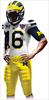 Mich Sugarbowl Jerseys Image