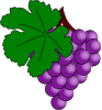 Grape With Vine Leaf Clip Art