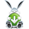 Download Bunny Image