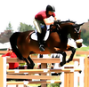 Equestrian Eventing Kentucky Derby Days Airborne Steed Image