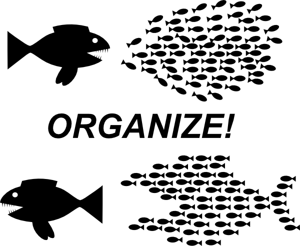Clipart Organize Fish Picture on teaching vector graphics