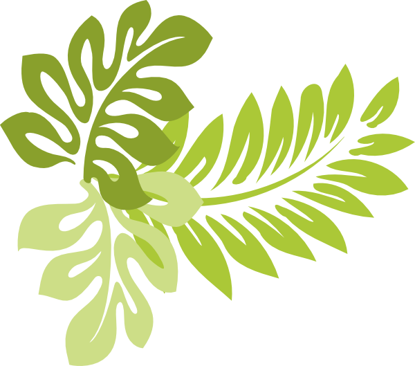 Tropical Leaves Clip Art Pictures to Pin on Pinterest ...