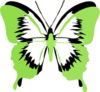 Green Butterfly Clip Art | Free Clip Art & Vector Art At Clker