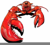 Lobster Clipart Images Free Image
