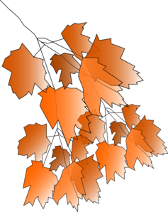 Tree Branch Autumn Clip Art