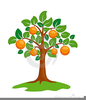 Tree Animation Clipart Image