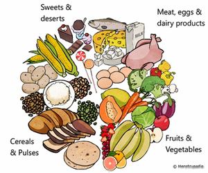 Balanced Diet Clipart | Free Images at Clker.com - vector clip art online,  royalty free & public domain