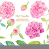 Clipart Flowers Pink Image