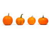 Pumpkins In A Row E L Image