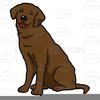 Chocolate Lab Clipart Image