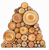 Pile Of Logs Clipart Image