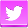 Free Pink Button Twitter Bird Image
