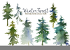 Clipart Pictures Of Pine Trees Image