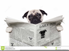 Clipart Dog With Newspaper Image