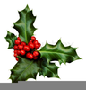 Christmas Holly Sprig Clipart Image