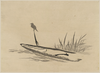 Bird And Boat Among Reeds. Image