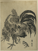 Hen And Chick. Image