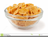 Frosted Flakes Clipart Image