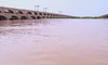 Taunsa Barrage Flood Image