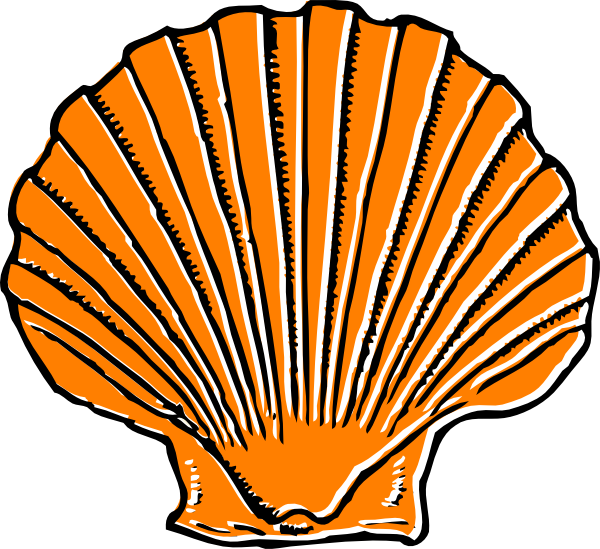 Orange Seashell Clip Art at Clker.com - vector clip art ...