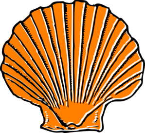Orange Seashell Clip Art