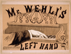 Mr. Wehli S Left Hand Image