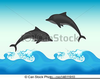 Free Dolphin Clipart Illustrations Image