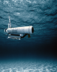The Remote Minehunting System (rms) Image