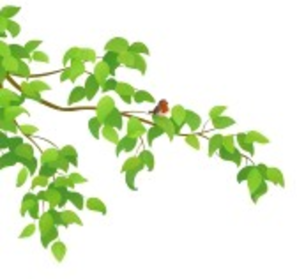 Ilustracion vectorial de una rama de arbol verde con un - Ramas de arboles ...