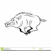 Boar Clipart Free Image